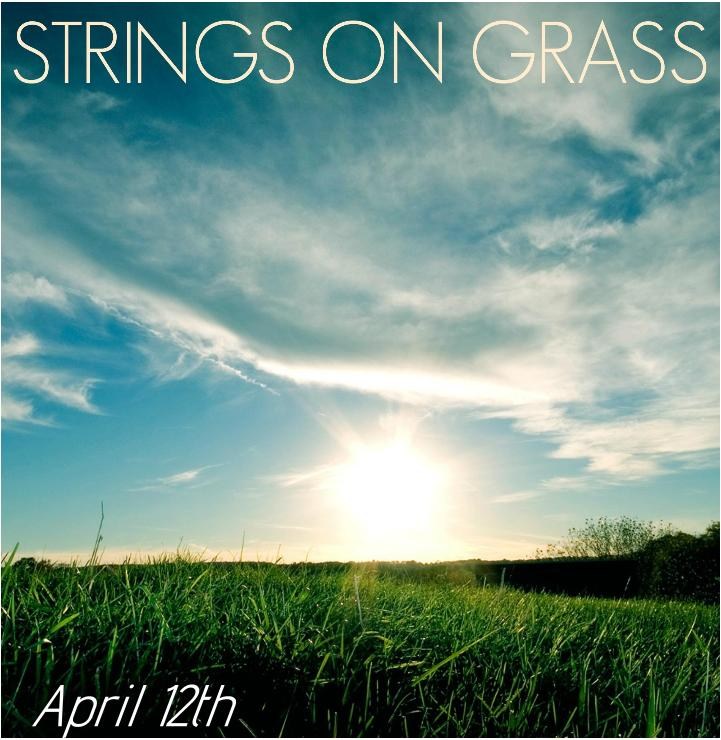 photo of Strings on Grass Sunset Series