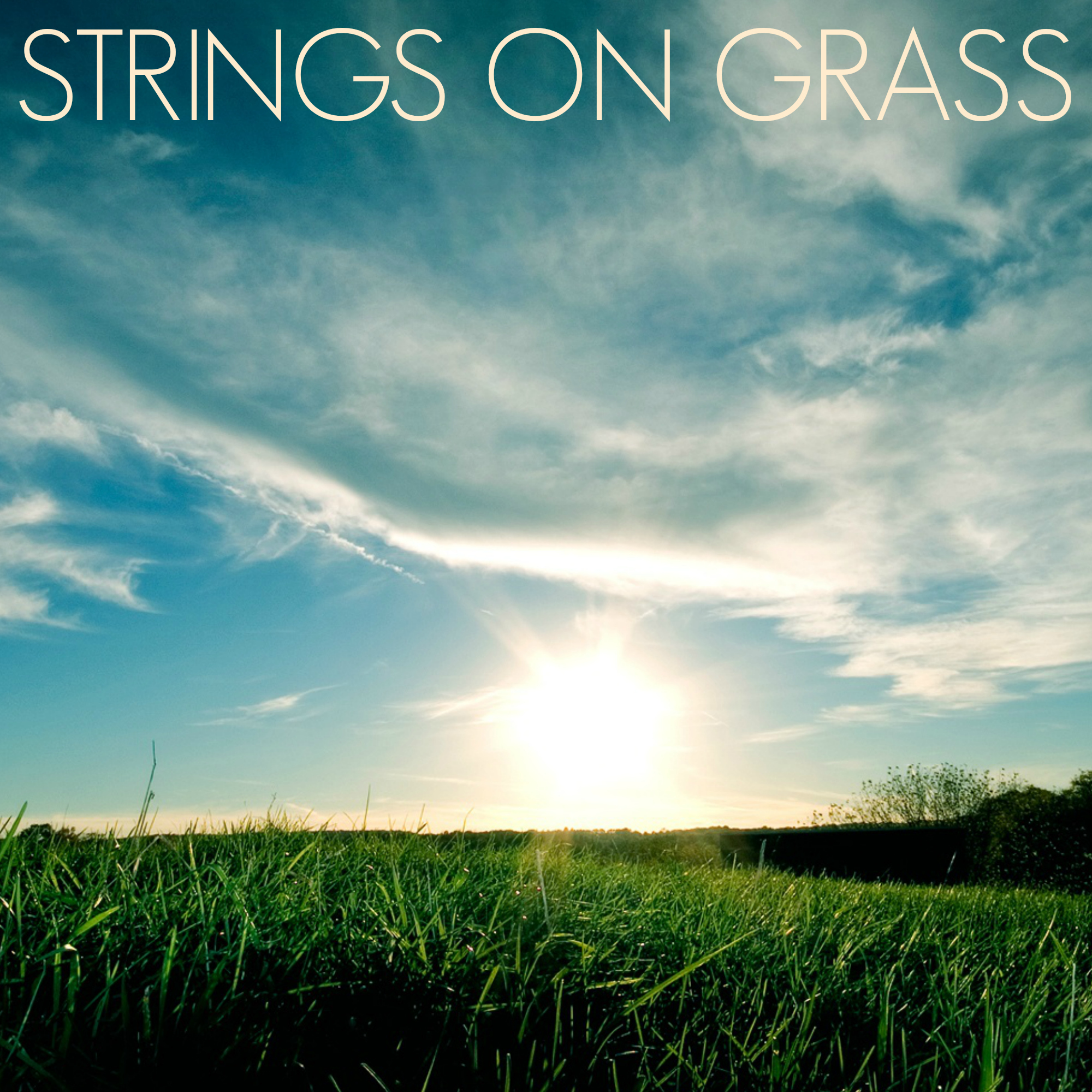 photo of Strings on Grass with Dana Cooper